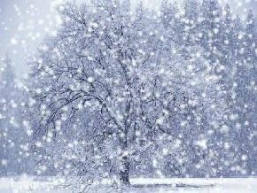 Бежал по снегу человек